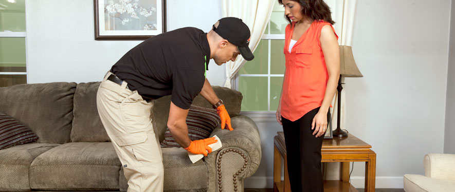 Spartanburg, SC carpet upholstery cleaning
